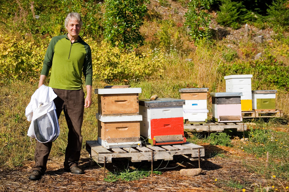 Steve tending to the hives.